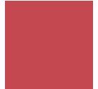 icon organization design & governance